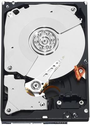 WD Black Performance Hard Drive WD2003FZEX - disco duro - 2 TB - SATA 6Gb/s