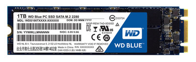 WD Blue PC SSD WDS100T1B0B